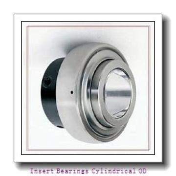 EBC ER35  Insert Bearings Cylindrical OD