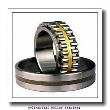 3.15 Inch | 80 Millimeter x 6.693 Inch | 170 Millimeter x 1.535 Inch | 39 Millimeter  NACHI NU316MY C3  Cylindrical Roller Bearings