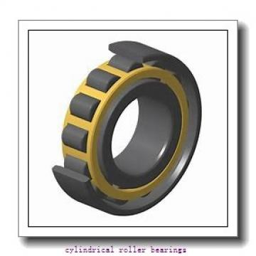 FAG NUP317-E-M1  Cylindrical Roller Bearings