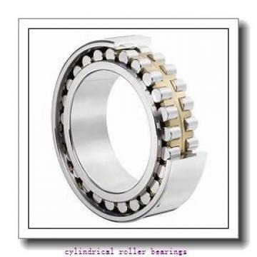 7.087 Inch   180 Millimeter x 11.024 Inch   280 Millimeter x 1.811 Inch   46 Millimeter  NSK NU1036M  Cylindrical Roller Bearings