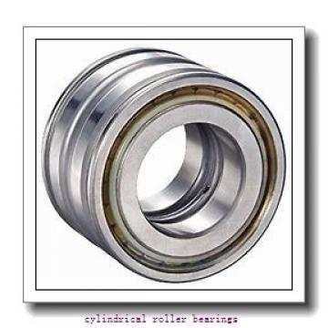 FAG NU214-E-M1-F1-C4  Cylindrical Roller Bearings